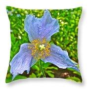 Blue Poppy In Les Jardins De Metis Or Reford Gardens Near Grand-metis-quebec Throw Pillow