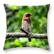 Blue Pose Throw Pillow