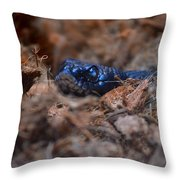 Blue Racer Snake Throw Pillow