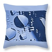 Blue Rain  Throw Pillow by Chris Berry