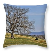 Blue Ridge Farm Throw Pillow