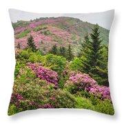 Blue Ridge Mountain Rhododendron - Roan Mountain Bloom Extravaganza Throw Pillow