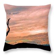 Blue Ridge Mountain Sunrise Panoramic  Throw Pillow