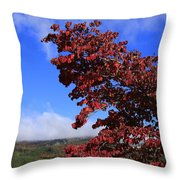 Blue Ridge Mountains In Alabama Throw Pillow
