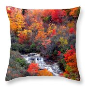 Blue Ridge Parkway Waterfall In Autumn Throw Pillow