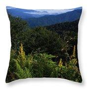 Blue Ridge Vista Throw Pillow