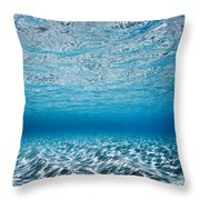 Blue Sea Throw Pillow by Sean Davey