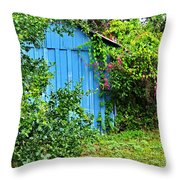 Blue Shed II Throw Pillow