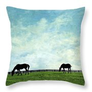 Blue Skies And Blue Grass Throw Pillow