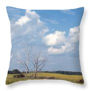 Blue Skies And Trees Throw Pillow