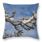 Blue Skies In Winter Throw Pillow