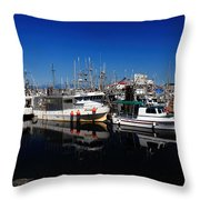 Blue Skies Over French Creek Throw Pillow