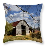 Blue Skies Red Roof Throw Pillow