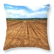Blue Sky And Field 14567 Throw Pillow
