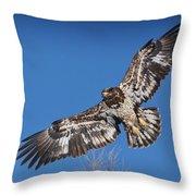 Blue Sky Flight Throw Pillow