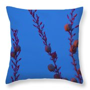Blue Sky Flowers At Night Throw Pillow
