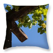 Blue Sky Grape Harvest - Thinking Of Fine Wine Throw Pillow