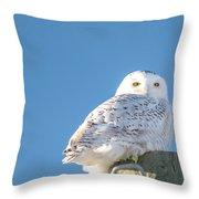 Blue Sky Snowy Throw Pillow