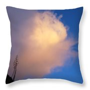 Blue Sky Sunset And Agave Throw Pillow