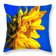 Blue Sky Sunshine Sunflower Throw Pillow