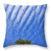 Blue Sky White Clouds Green Trees Throw Pillow