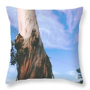 Blue Sky With Paper Bark Throw Pillow