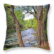 Blue Spring Branch 2 Throw Pillow