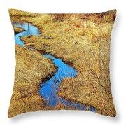 Blue Stream Throw Pillow