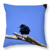 Blue View Throw Pillow