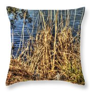 Blue Water 2 Throw Pillow