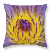 Blue Water Lily Throw Pillow by Heiko Koehrer-Wagner