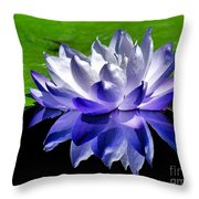 Blue Water Lily Reflection Throw Pillow
