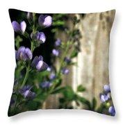 Blue Wild Indigo - Baptisia Australis Throw Pillow