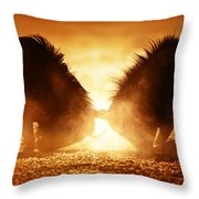 Blue Wildebeest Dual In Dust Throw Pillow