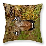 Blue-winged Teal Drake Throw Pillow
