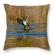 Blue-winged Teal Flapping Throw Pillow