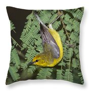 Blue-winged Warbler Throw Pillow
