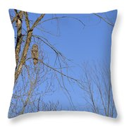 Blue With A Gray Throw Pillow