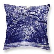 Blue World In Savannah Throw Pillow