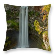 Blue Yellow And Green At Brandywine Throw Pillow