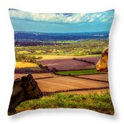 Bluebell And Buttercup Throw Pillow