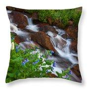 Bluebell Creek Throw Pillow