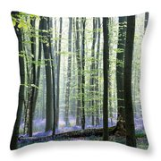 Bluebell Forrest 1 Throw Pillow