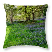 Bluebell Way Throw Pillow