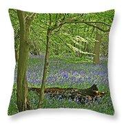 Bluebell Wood 1 Throw Pillow