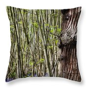 Bluebell Woodland Throw Pillow