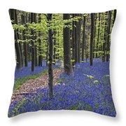 Bluebells In Beech Forest Throw Pillow