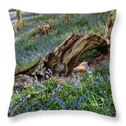 Bluebells At Bransdale Throw Pillow