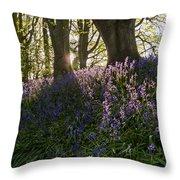 Bluebells Backlit Throw Pillow
