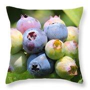 Blueberries Closeup Throw Pillow